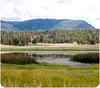 Luna Lake Wildlife Area