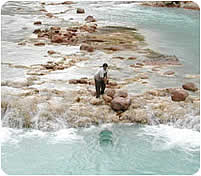 Researcher setting a hoop net in the Little Colorado River
